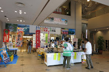 Awa Odori Hall, Tokushima, Japan