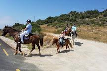 Riding Fun In The Sun, Casares, Spain