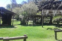 Parque Juan Zorrilla de San Martin, Maldonado, Uruguay