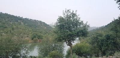 Chenargai Dam