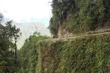 Yungas Road, La Paz, Bolivia