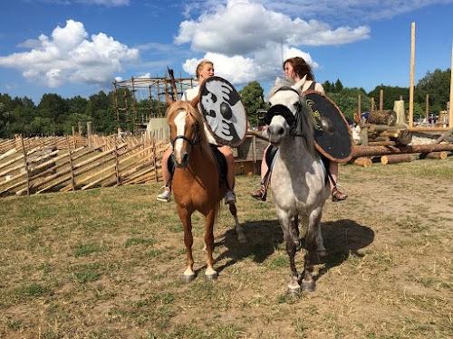 Asva Viikingite küla