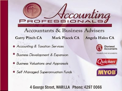 Accounting Professionals