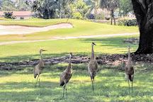Palm Beach National Golf & Country Club, Lake Worth, United States
