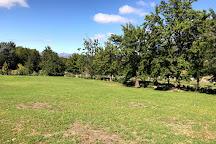 Oakhurst Olives, Tulbagh, South Africa