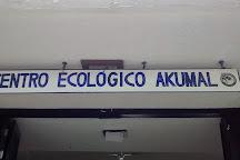 Centro Ecologico Akumal, Akumal, Mexico