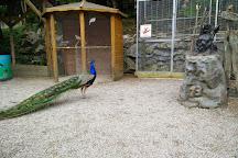 Wild- und Freizeitpark Willingen, Willingen, Germany