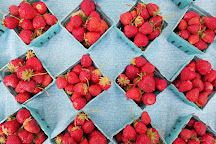 South Barlow Berries, Canby, United States