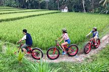 Bali E-Bike Tours, Ubud, Indonesia