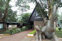 Leo Africa Safaris, Nairobi, Kenya
