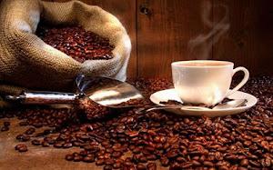 Café Orgánico del Perú - KafePeru 6