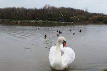 Hetton Lyons Country Park, Sunderland, United Kingdom