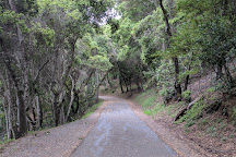 Sawyer Camp Trail, San Mateo, United States