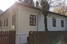 Ion Luca Caragiale Museum, Ploiesti, Romania