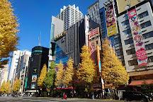 Akihabara, Chiyoda, Japan