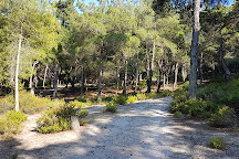Visit Plaka Forest on your trip to Kos or Greece • Inspirock