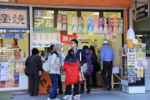 Kamikochi Tourism Center, Matsumoto, Japan