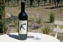 Delectus Winery, St. Helena, United States