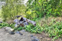 McConnell Arboretum & Botanical Gardens, Redding, United States