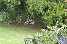 Three Fox Vineyard, Delaplane, United States