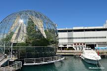 Aquarium of Genoa, Genoa, Italy