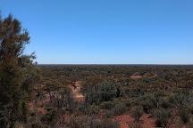 Karlkurla Bushland Park, Kalgoorlie-Boulder, Australia