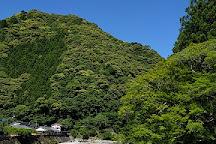 Taki no Hai, Kozagawa-cho, Japan