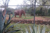 Botanical Garden and Zoo (Jardin Botanico y Zoologico), Asuncion, Paraguay