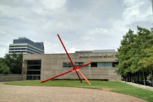 Dallas Museum of Art, Dallas, United States