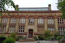 Zoologisches Museum, Kiel, Germany
