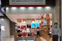 Lotte Duty Free Tokyo Ginza, Ginza, Japan
