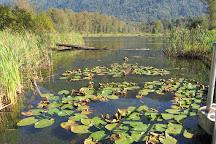 Cheam Lake Wetlands Regional Park, Rosedale, Canada
