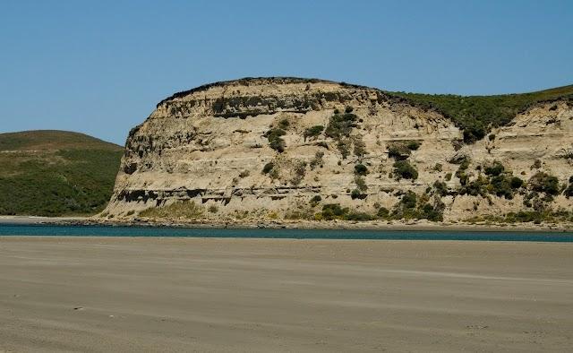 Limantour Beach