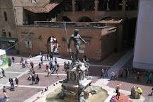 Fontana del Nettuno, Bologna, Italy