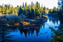 Whiskey Rapids Trail, Algonquin Provincial Park, Canada