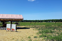 Schartner Farms, Exeter, United States