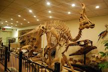 Stones 'N Bones Museum, Sarnia, Canada