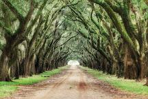 Evergreen Plantation, Edgard, United States