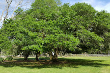 Destrehan Plantation, Destrehan, United States
