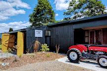 Kiwifruit Country, Paengaroa, New Zealand