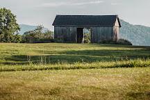Early Mountain Vineyards, Madison, United States