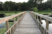 Brazos Bend State Park, Needville, United States