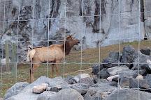 Zoo Idaho, Pocatello, United States
