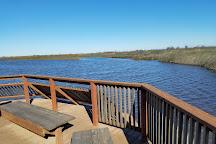 Cosumnes River Preserve, Galt, United States