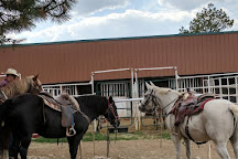 Diamond Hitch Stables, Pagosa Springs, United States