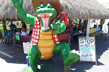 Everglades City Airboat Tours, Everglades City, United States