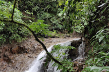 La Amistad International Park, Osa Peninsula, Costa Rica