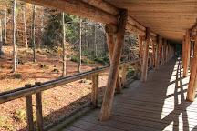 Nationalparkzentrum Falkenstein, Lindberg, Germany