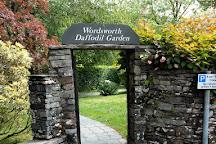 Wordsworth Daffodil Garden, Grasmere, United Kingdom