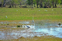 Ethical Adventures NT, Darwin, Australia